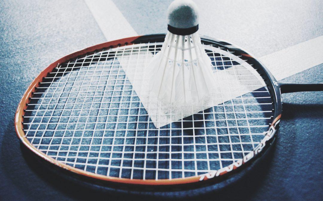 Palla del Badminton, racchette e una rete: divertimento assicurato